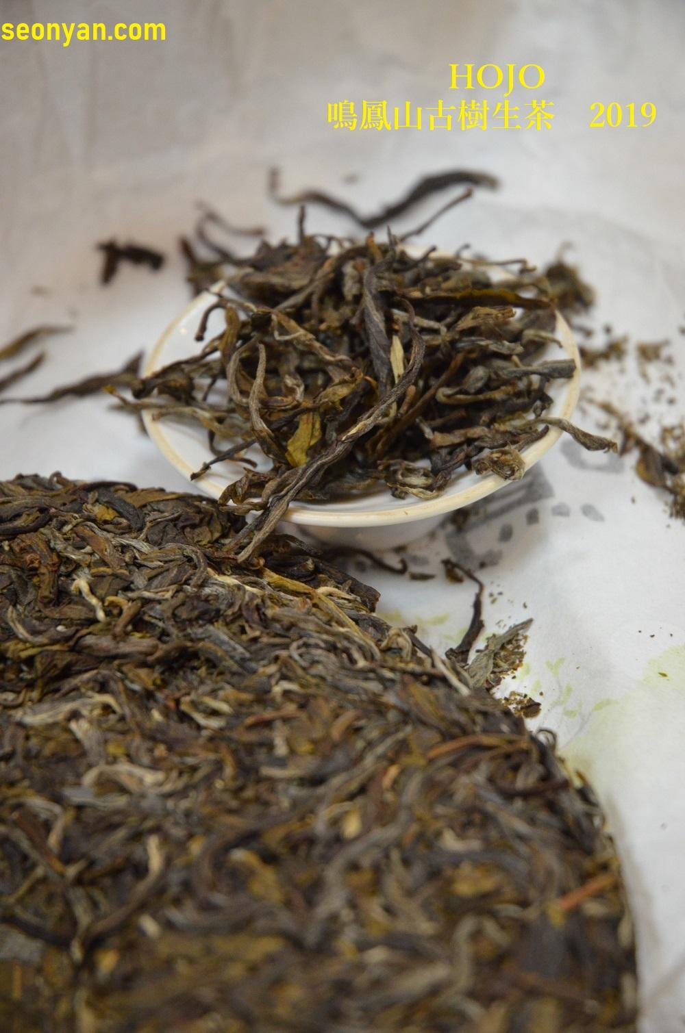 HOJOの鳴鳳山古樹生茶2019の茶葉画像1