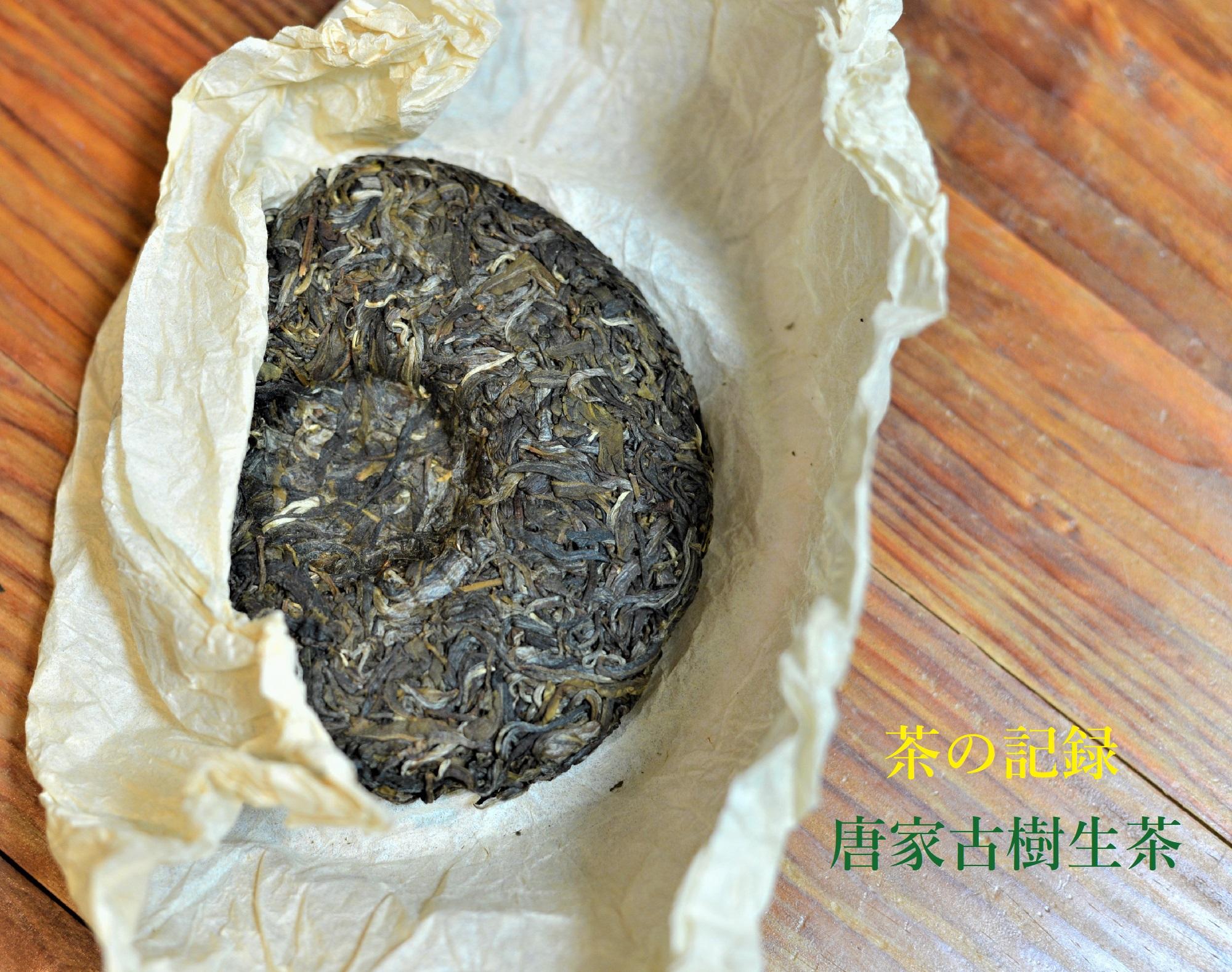 唐家古樹生茶 表紙