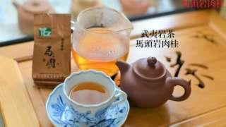 馬頭岩肉桂の観察  茶の記録(馬肉)