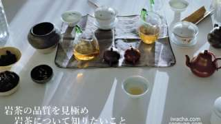 岩茶について知りたいこと 岩茶の品質を見極め