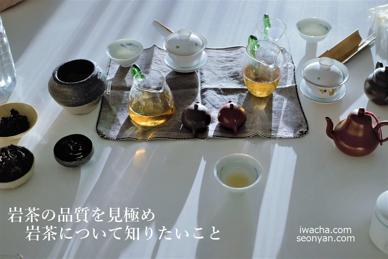 岩茶について知りたいこと 表紙