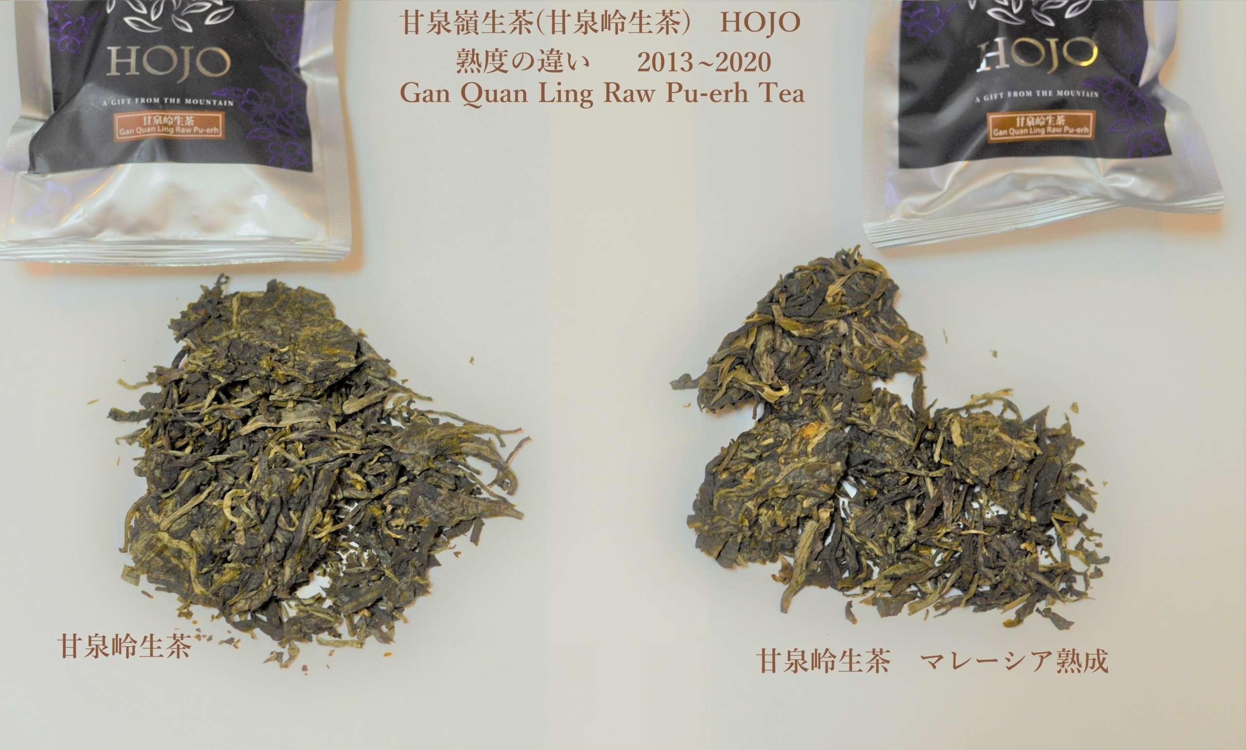 甘泉嶺生茶