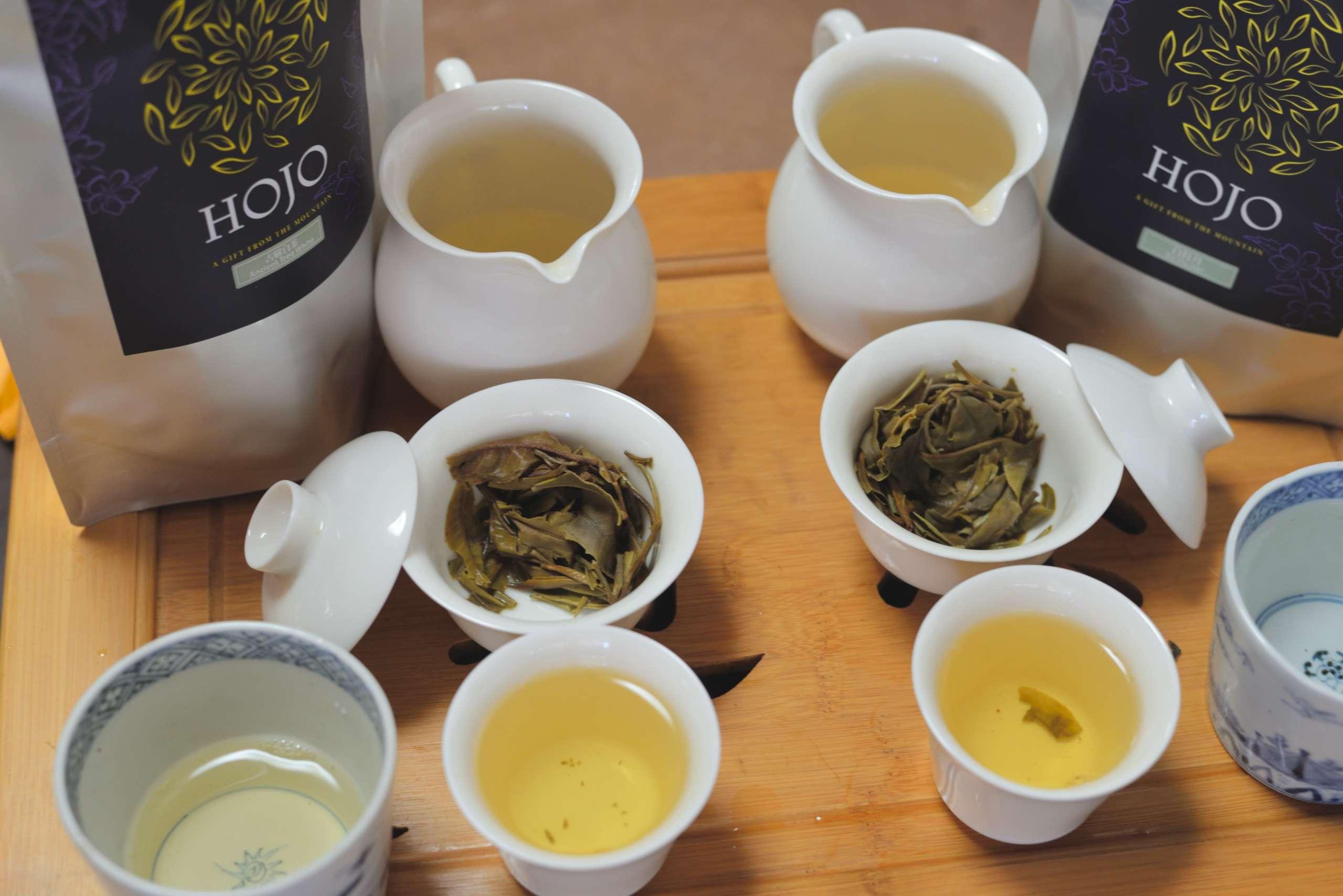 雲南省産の白茶二種類を飲む