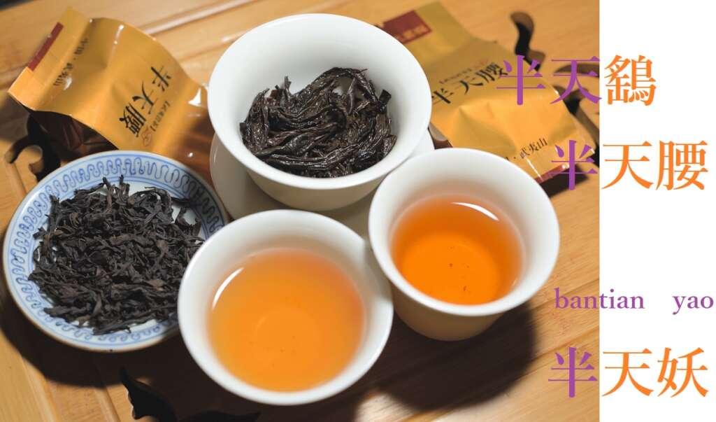 半天腰 表紙 半天腰の茶葉と茶底の様子